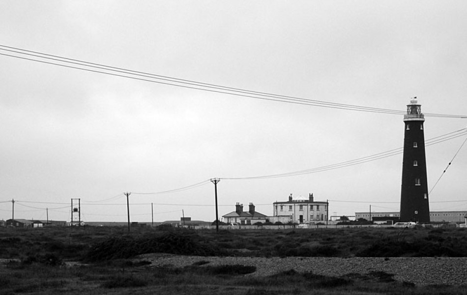 Dungeness-20