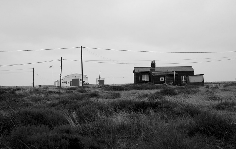 Dungeness-5