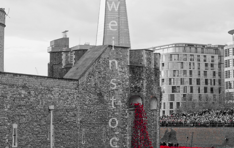 Tower Poppies 1